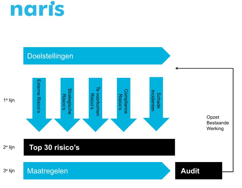 Risk Based Auditing Naris