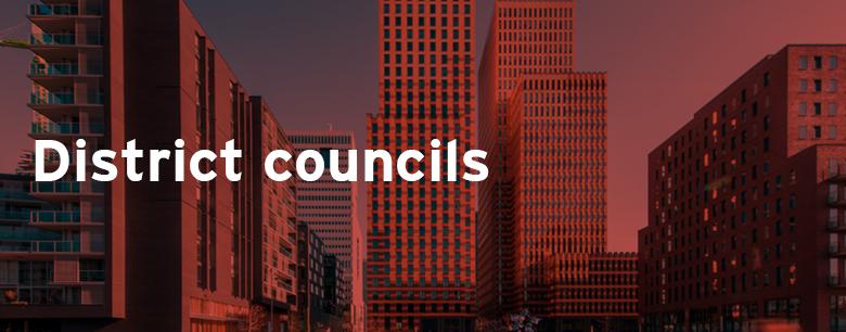 District councils